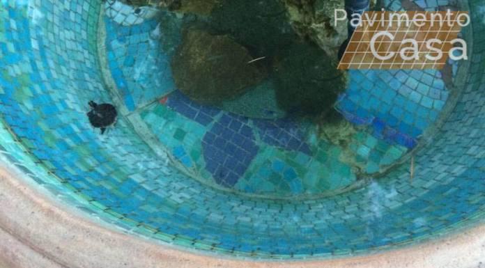 acquario con mosaico e stucco epossidico impermeabile
